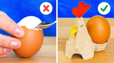 20 New Ways to Use Egg Trays And Eggshells    Useful Crafts For Your Kitchen!